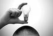 Der Widerspruch zwischen Gefühl und Logik