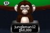 The Daily Rewind - Jungleman Coaching, Pocket Kings Redundancies and US Hearing
